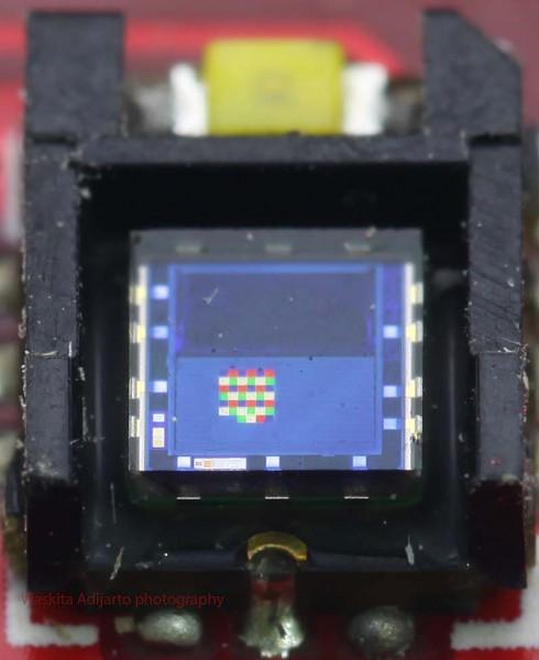 Close up sensor ADJD-S371 bagian penerima cahaya