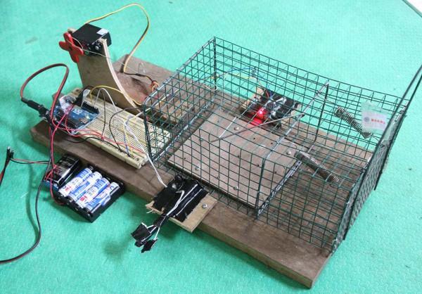 Perangkap Tikus Elektronik