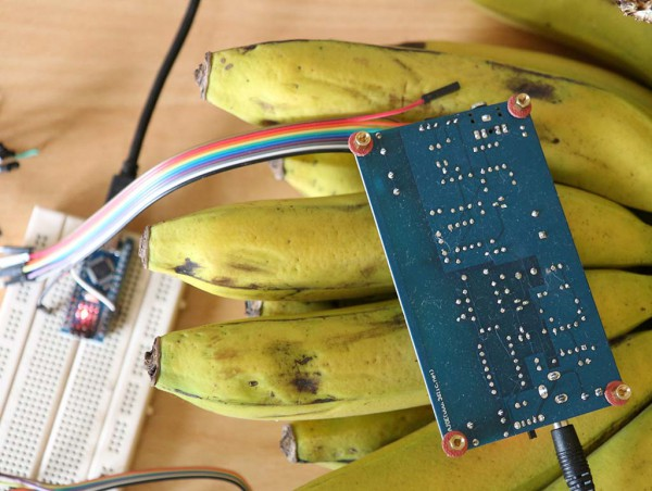 Pengukuran radiasi pisang ambon