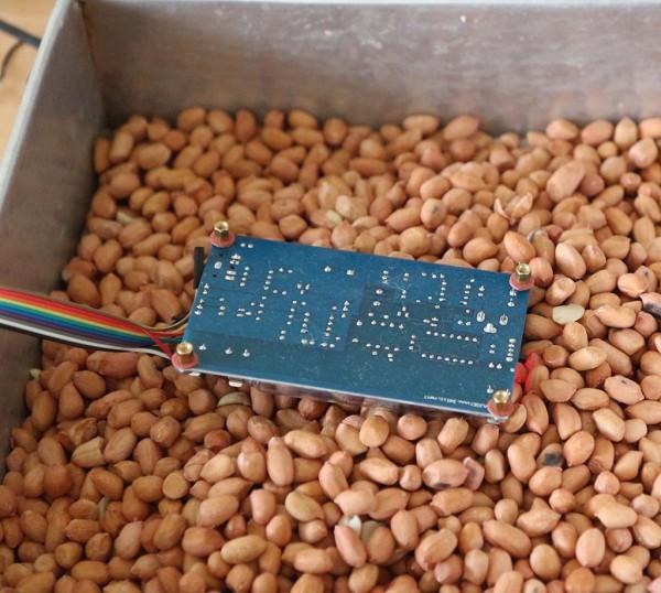 Pengukuran radiasi kacang tanah