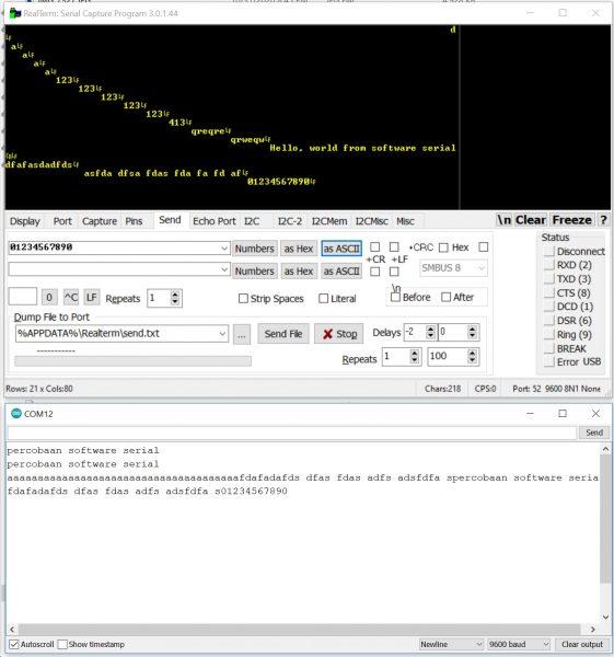 Tampilan RealTerm dan Serial Monitor